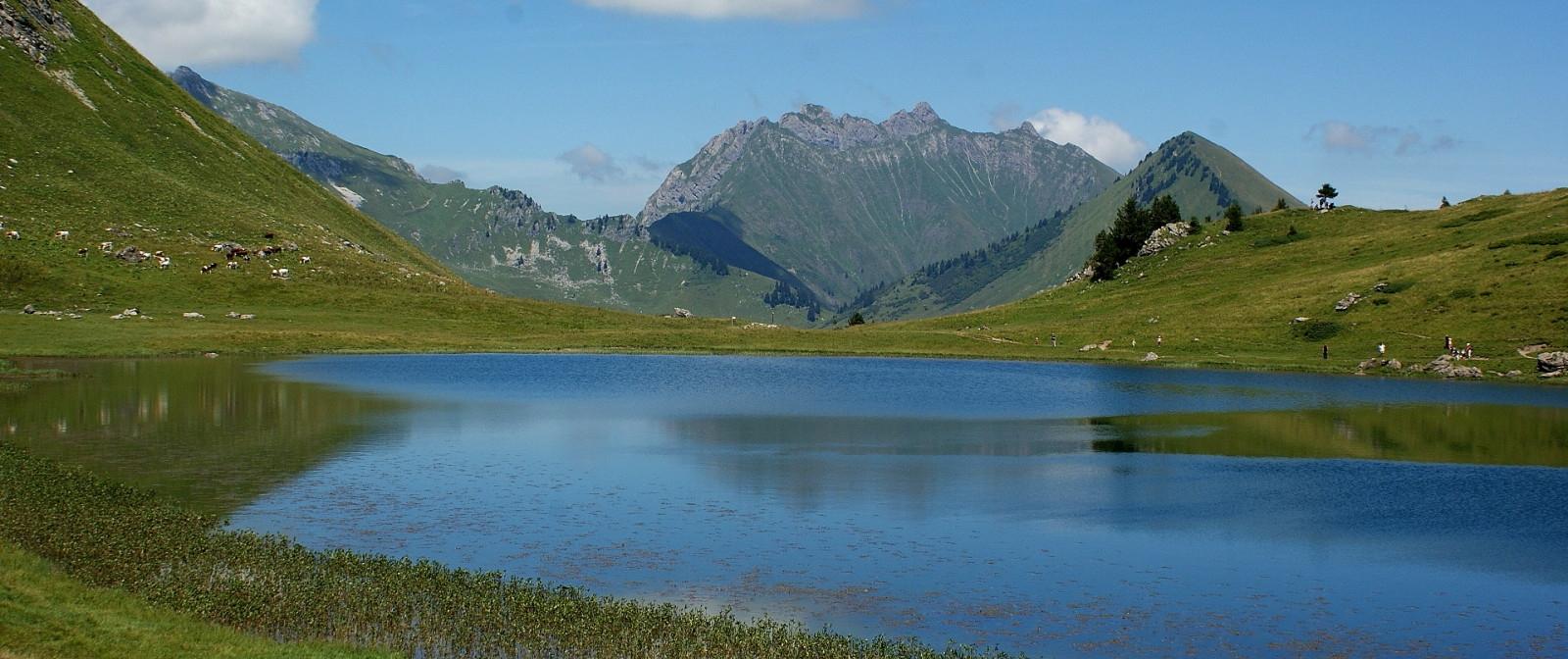 Lac de roy prazdelys